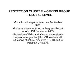 PROTECTION CLUSTER WORKING GROUP  – GLOBAL LEVEL