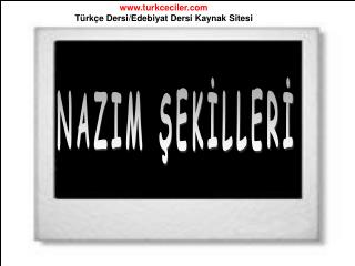 NAZIM ŞEKİLLERİ