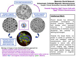 Materials World Network:  Anisotropic Colloidal Magnetic Nanostructures