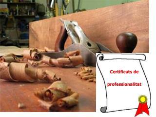 Certificats de  professionalitat