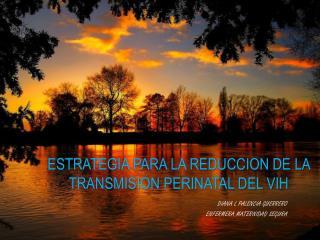 ESTRATEGIA PARA LA REDUCCION DE LA TRANSMISION PERINATAL DEL VIH