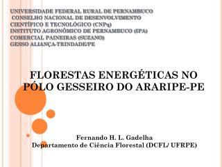 UNIVERSIDADE FEDERAL RURAL DE PERNAMBUCO  CONSELHO NACIONAL DE DESENVOLVIMENTO