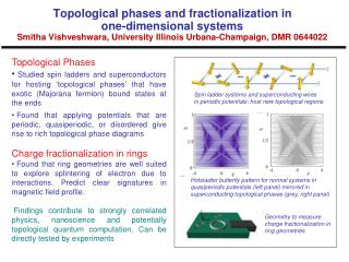 Topological Phases