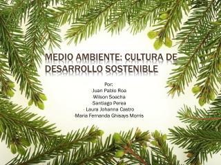 Medio ambiente: cultura de desarrollo sostenible