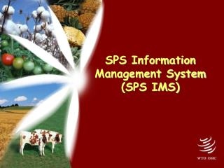 SPS Information Management System (SPS IMS)