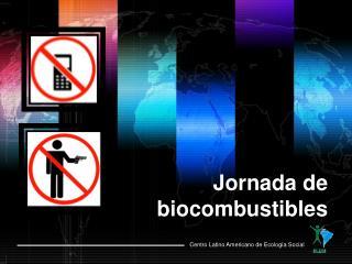 Jornada de biocombustibles