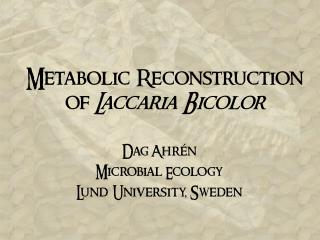 Metabolic Reconstruction of  Laccaria Bicolor