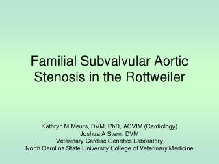 Familial Subvalvular Aortic Stenosis in the Rottweiler