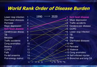 World Rank Order of Disease Burden