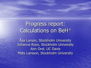 Progress report: Calculations on BeH