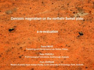 Cenozoic magmatism on the northern Somali plate: a re-evaluation
