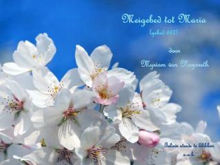 Meigebed tot Maria (gebed 667)