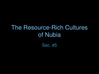 The Resource-Rich Cultures of Nubia