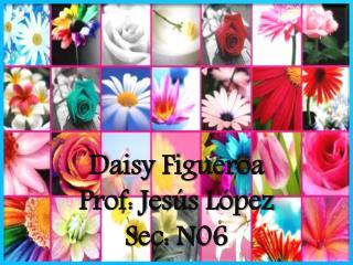 Daisy Figueroa Prof: Jesús López Sec: N06