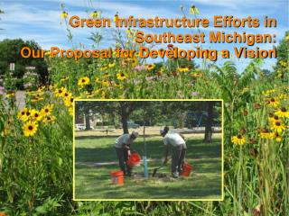 Green Infrastructure Efforts in Southeast Michigan:  Our Proposal for Developing a Vision