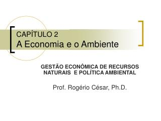 CAPÍTULO 2 A Economia e o Ambiente