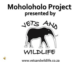 vetsandwildlife.co.za
