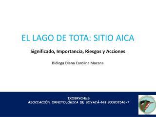 IXOBRYCHUS ASOCIACIÓN ORNITOLÓGICA DE  BOYACÁ-Nit:900201546-7