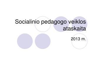 Socialinio pedagogo veiklos ataskaita