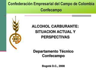 ALCOHOL CARBURANTE:  SITUACION ACTUAL Y  PERSPECTIVAS