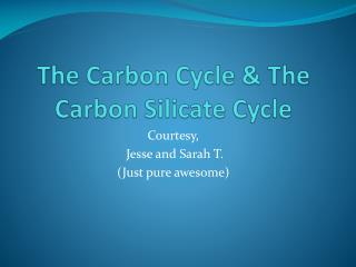 The Carbon Cycle & The Carbon Silicate Cycle