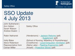 SSO Update  4 July 2013