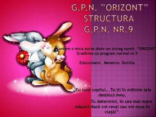 G.P.N. �ORIZONT� STRUCTURA  G.P.N. NR.9