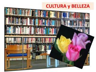 CULTURA y BELLEZA