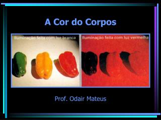 A Cor do Corpos
