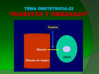 "TEMA OBSTETRICIA-22 ""DIABETES Y EMBARAZO"""