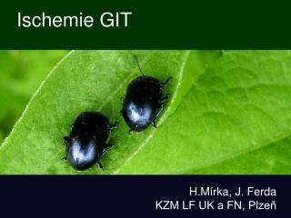 Ischemie GIT