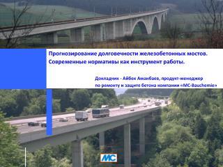 Прогнозирование долговечности железобетонных мостов.  Современные нормативы как инструмент работы.