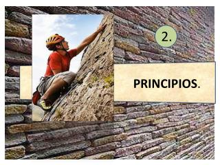 PRINCIPIOS .