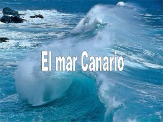 El mar Canario