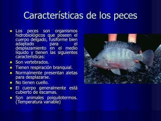 Características de los peces
