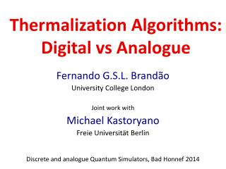 Thermalization  Algorithms : Digital  vs  Analogue
