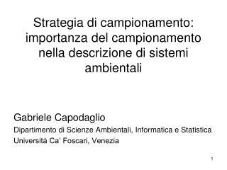 Strategia di campionamento: importanza del campionamento nella descrizione di sistemi ambientali