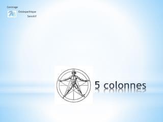 5 colonnes
