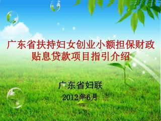 广东省扶持妇女创业小额担保财政 贴息贷款项目 指 引介绍
