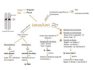 Locus / Loci