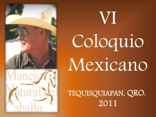 VI  Coloquio Mexicano