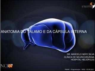 ANATOMIA DO TÁLAMO E DA CÁPSULA INTERNA DR. MARCELO NERY SILVA