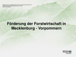 Förderung der Forstwirtschaft in Mecklenburg - Vorpommern