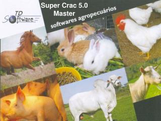Super Crac 5.0 Master