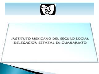 INSTITUTO  MEXICANO DEL SEGURO SOCIAL DELEGACION ESTATAL EN  GUANAJUATO