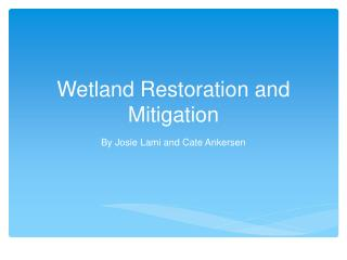 Wetland Restoration and Mitigation