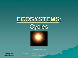 ECOSYSTEMS : Cycles