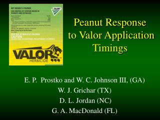 Peanut Response  to Valor Application Timings