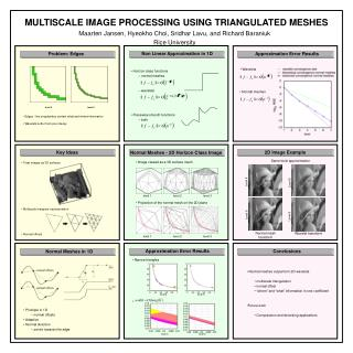 MULTISCALE IMAGE PROCESSING USING TRIANGULATED MESHES