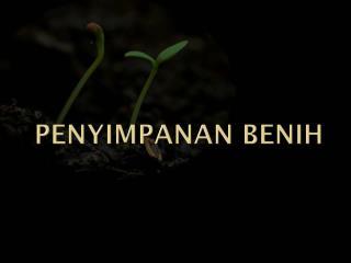 PENYIMPANAN BENIH